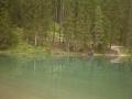 08123 Lago e sfondo
